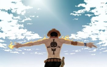 Sub-Gallery ID: 3301 One Piece