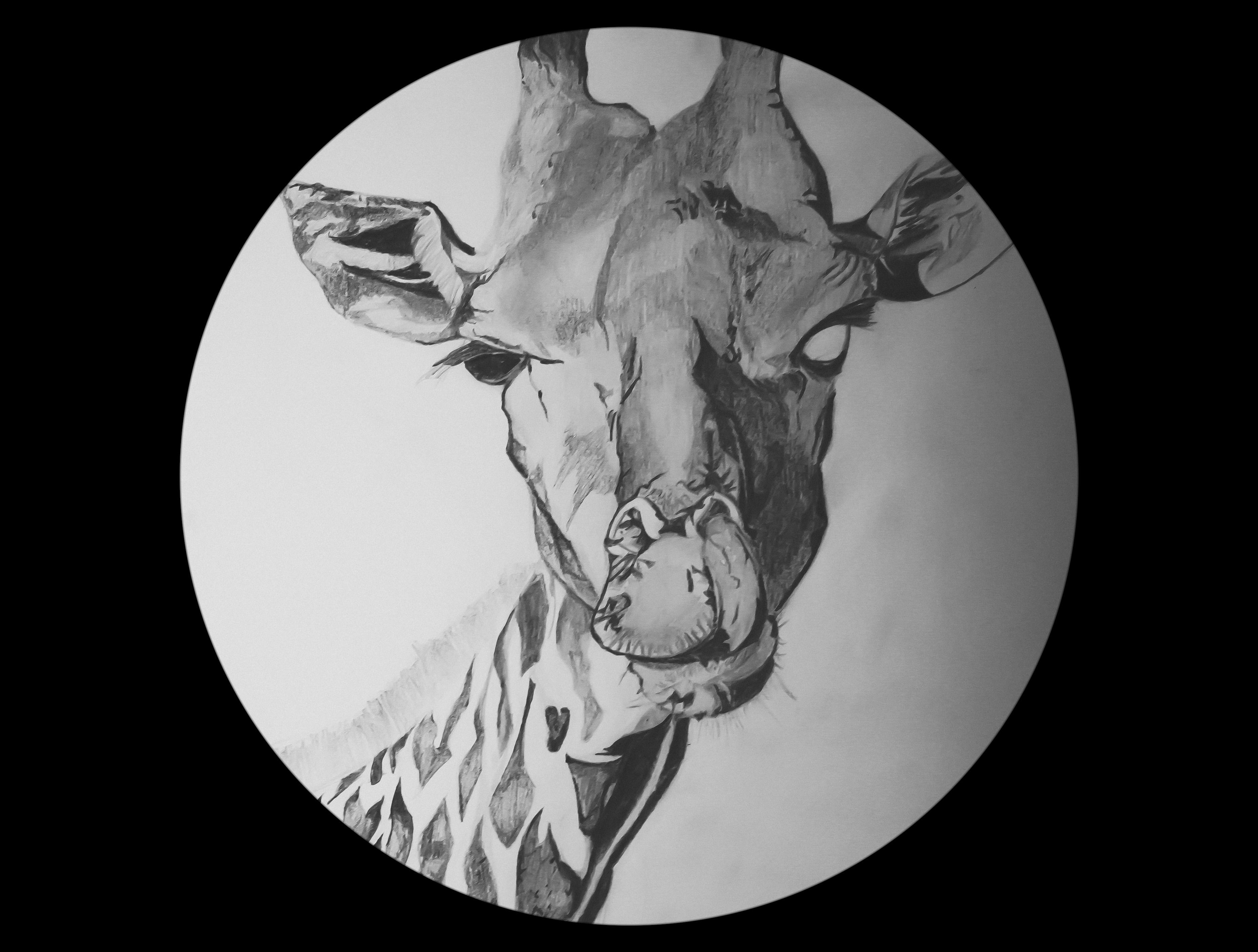 Art ID: 117634