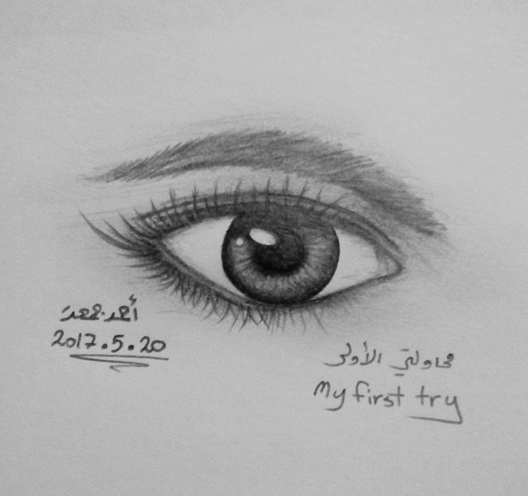 Art ID: 119047