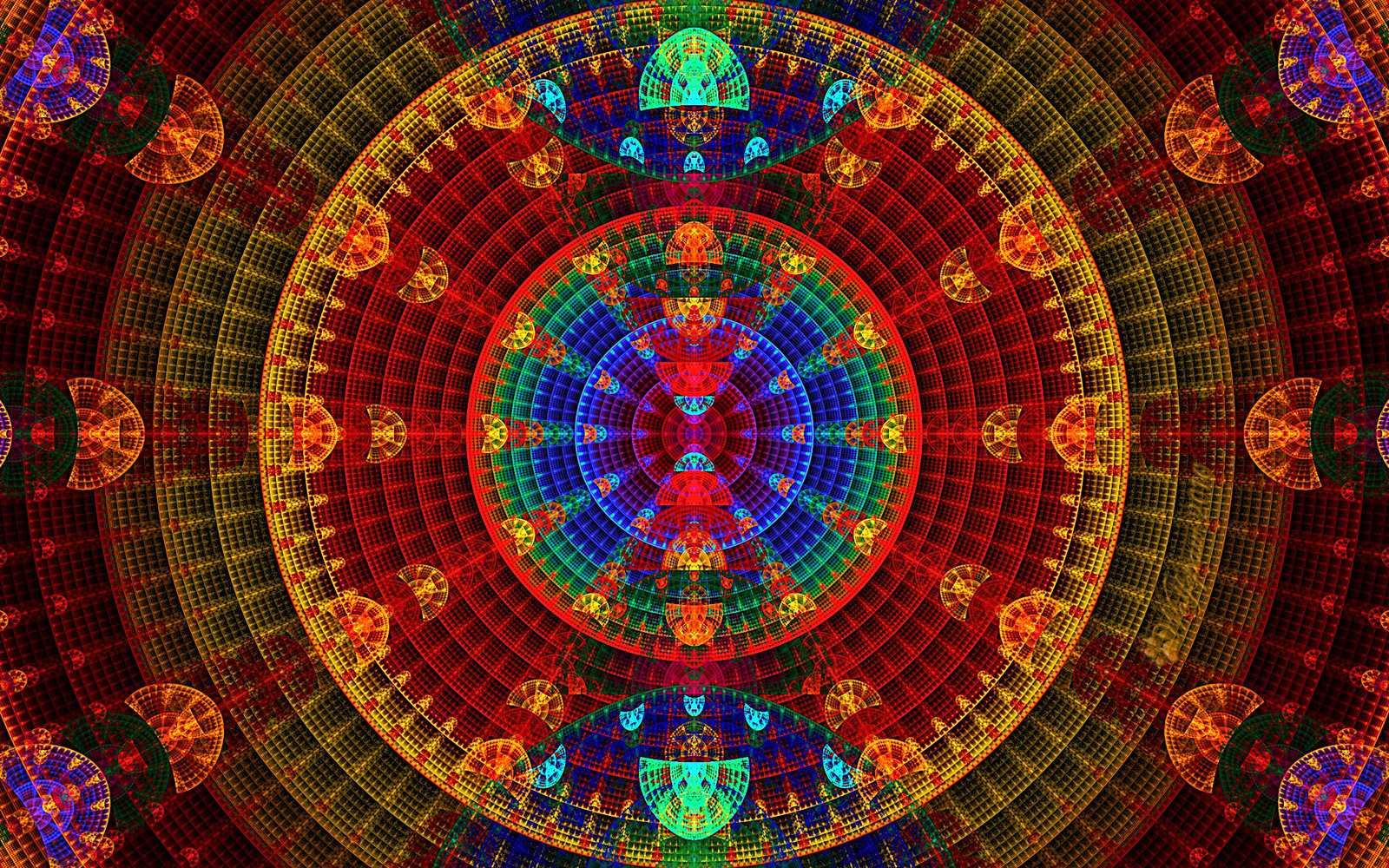 pics photos wallpapers siamese by lsd high hd wallpaper
