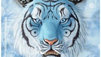 Bengal Tiger Wikipedia