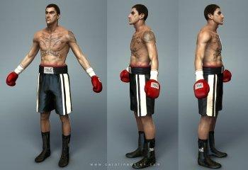 Preview CGI - Boxer Art
