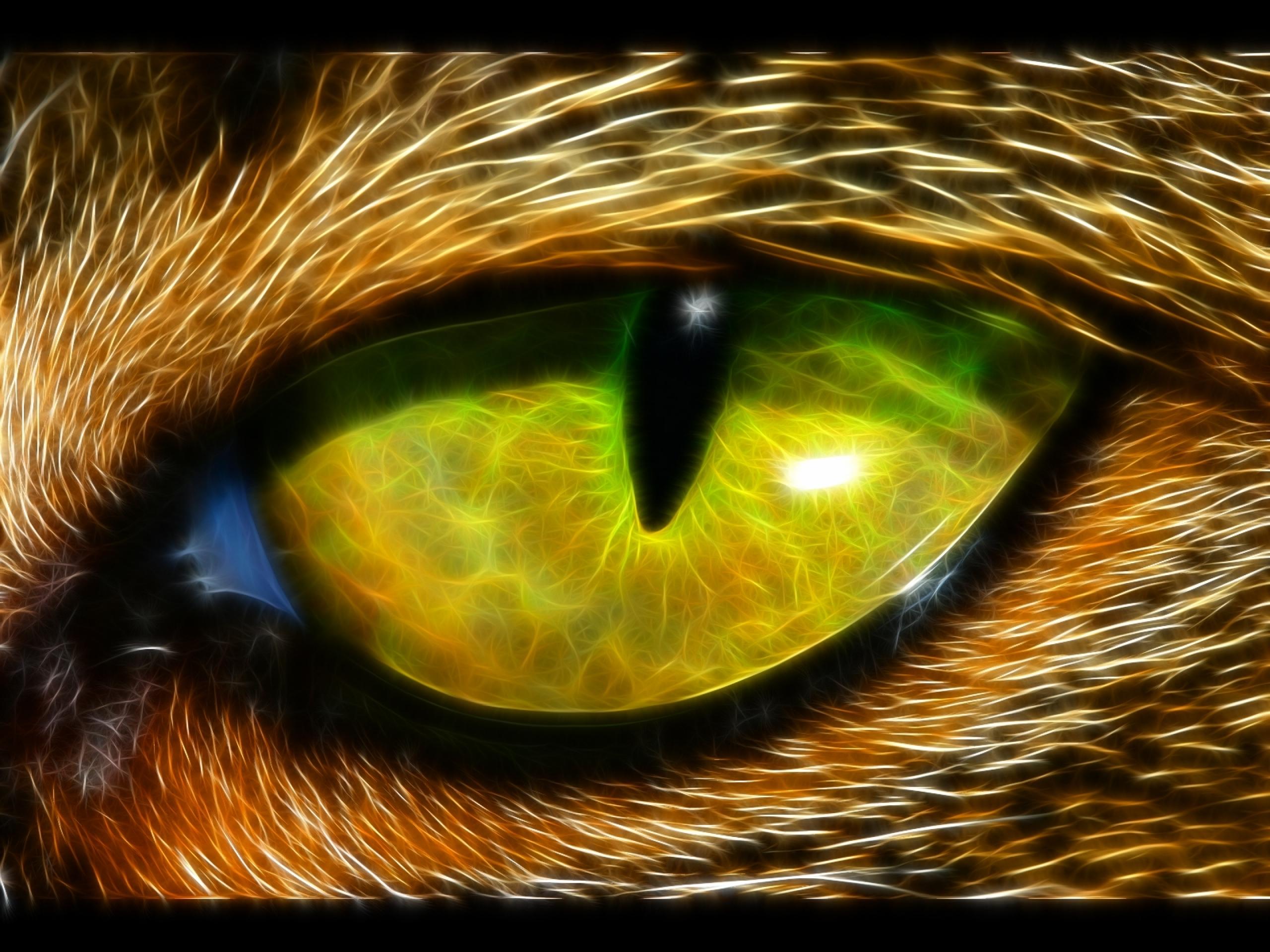 Eyes animals fractalius art id 56515 art abyss - Eye drawing wallpaper ...