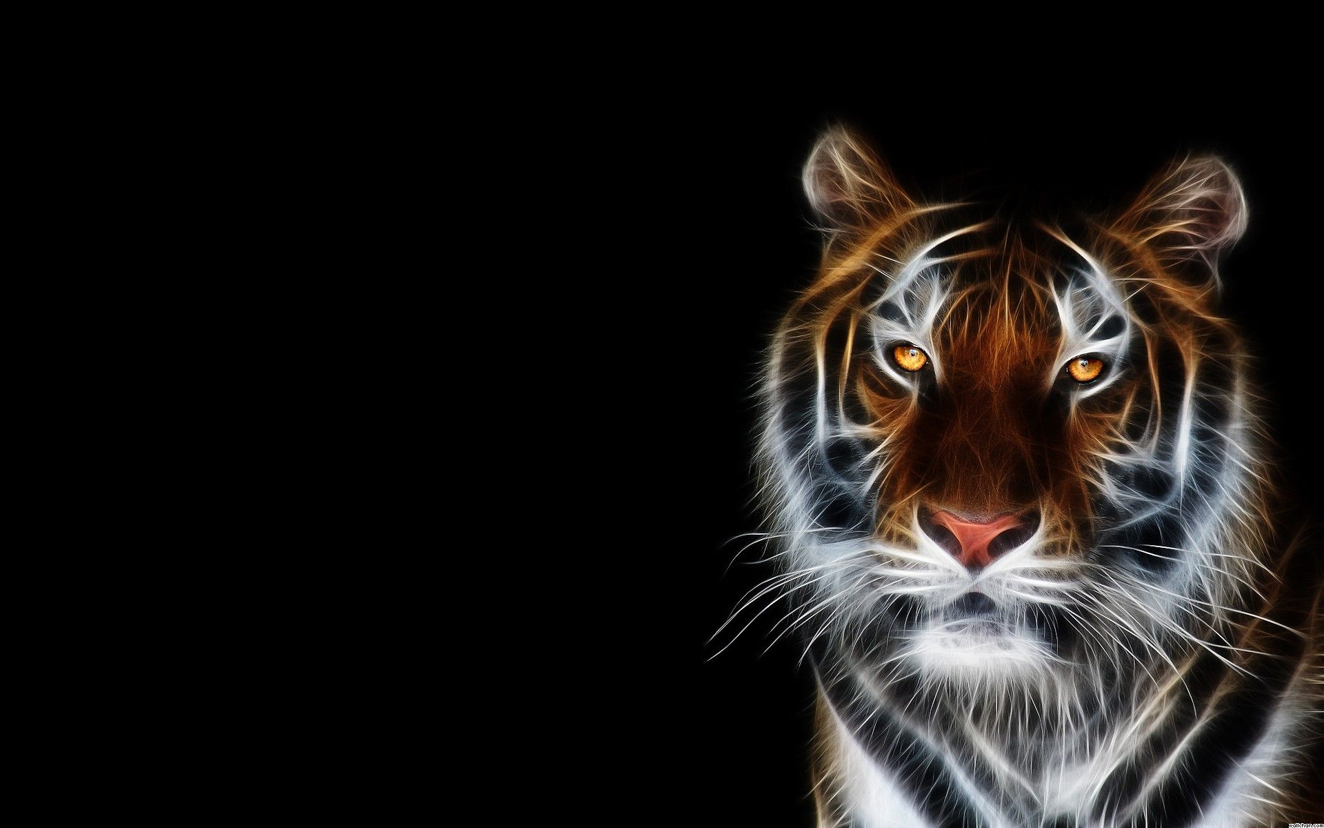 Animal Wallpapers and Backgrounds - Page 4 - Desktop