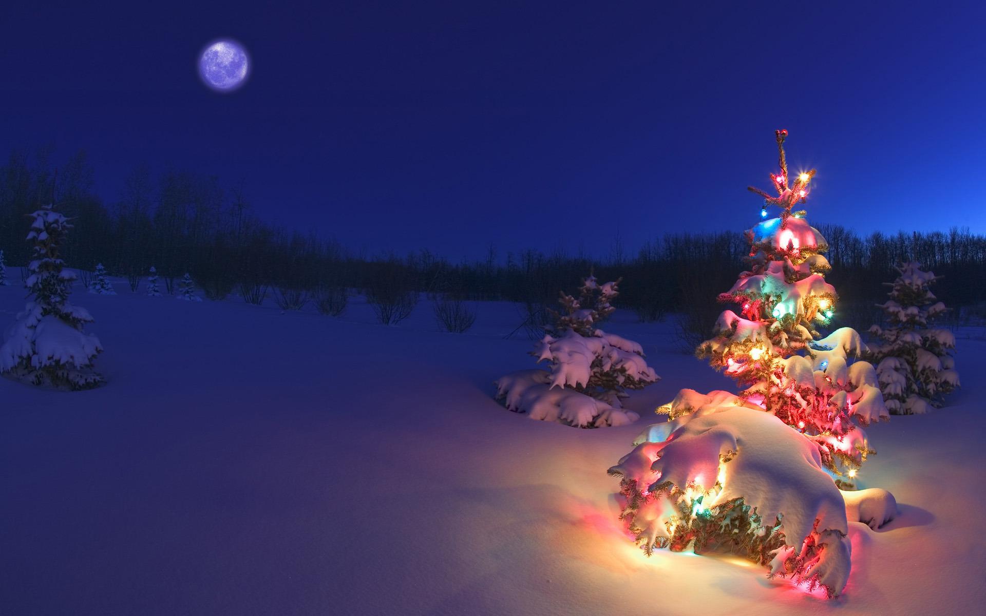 Christmas Art.Christmas Art Id 74523 Art Abyss