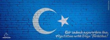 Preview Misc - Flag Of East Turkestan Art