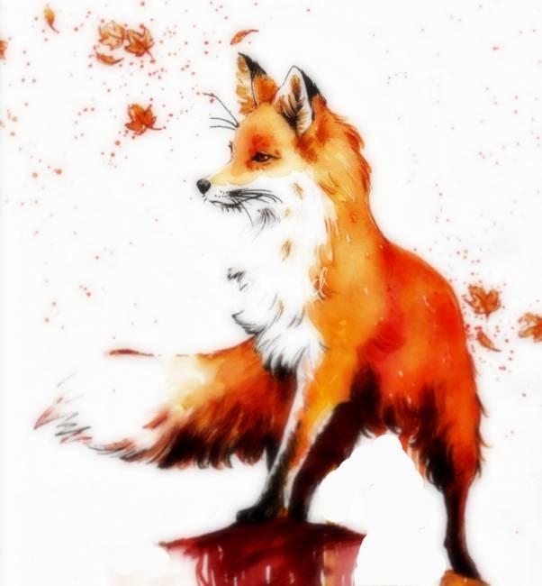 Cool fox drawings related keywords cool fox drawings for Cool fox drawings
