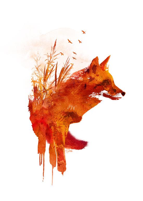 fox art id 86229 art abyss
